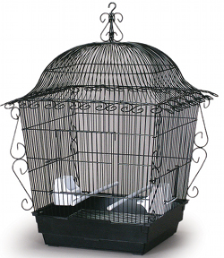 Tiel Scrollwork Cage