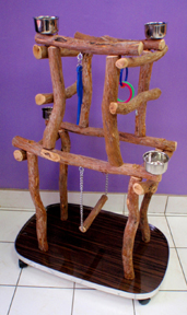 Pet Bird Play Gyms made out of natural Dragonwood.